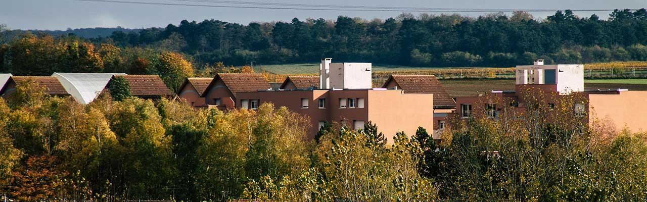 Hôtels Murigny Campanile