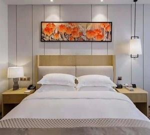 Hotel Golden Tulip Guiyang