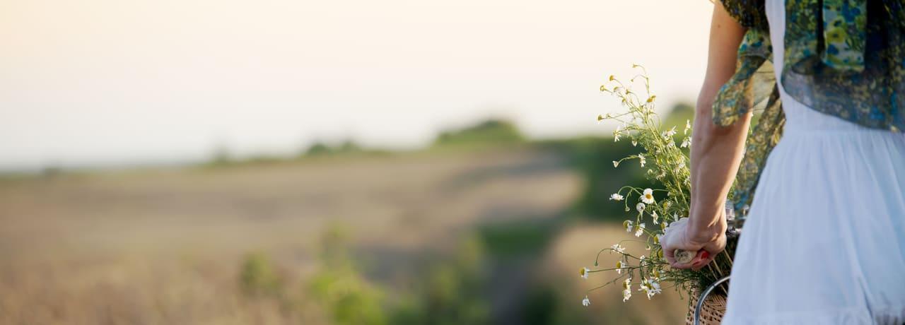 Offre Bloomy Days Kyriad