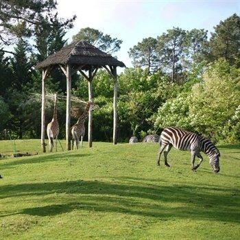 hôtels Campanile Zoo de Bordeaux-Pessac