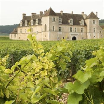 Hôtels Première Classe Dijon